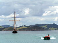 R Tucker Thompson, Bay of Islands, NZ