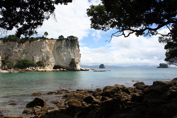 Stingray Bay, Coromandel Peninsula, NZ.